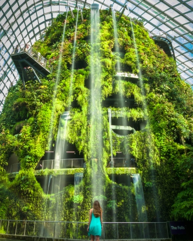 Gardens by the Bay Cloud Forest Waterfall long shutter speed shot