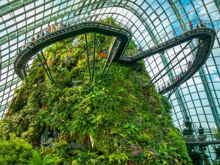 Cloud Forest in Gardens by the Bay in Singapore
