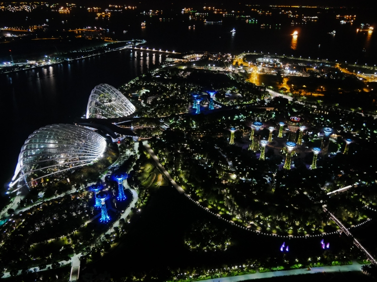 Aerial view of Gardens by the Bay at night
