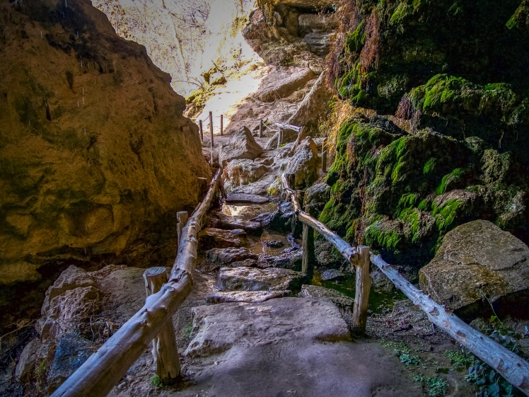 Rock path in Hamilton Pool Preserve