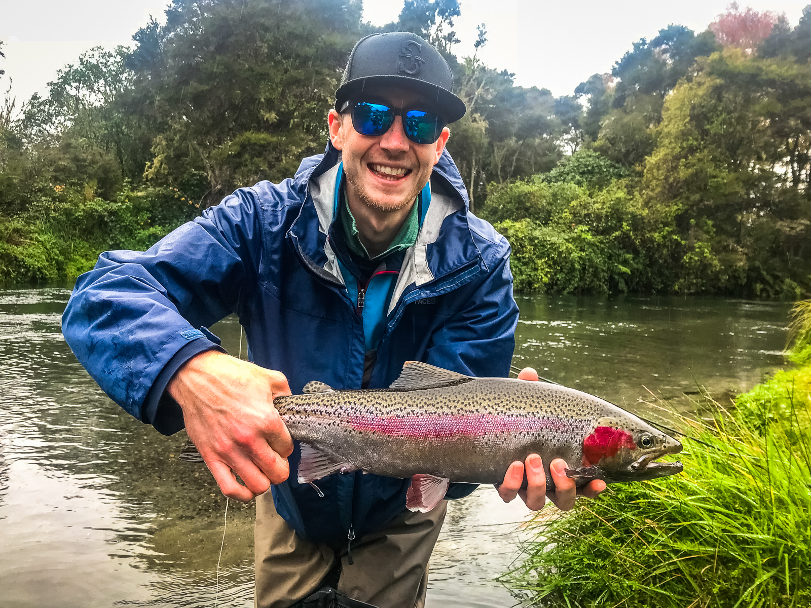 Rainbow Trout Taupo, New Zealand