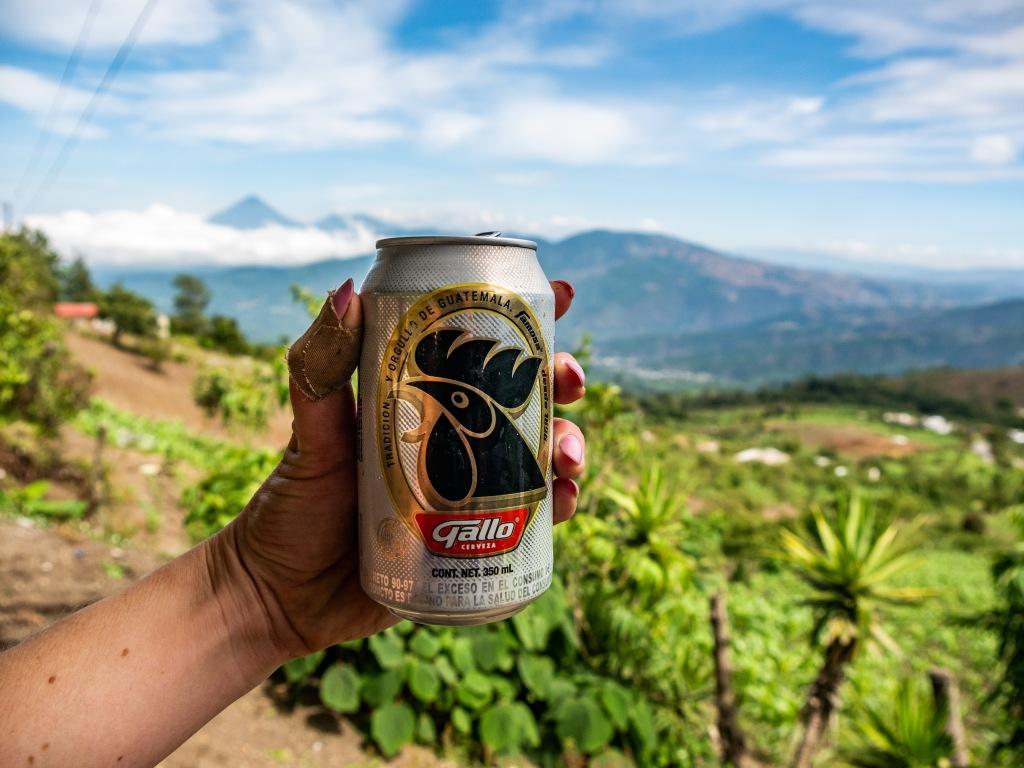 Gallo Cerveza (Guatemalan beer)