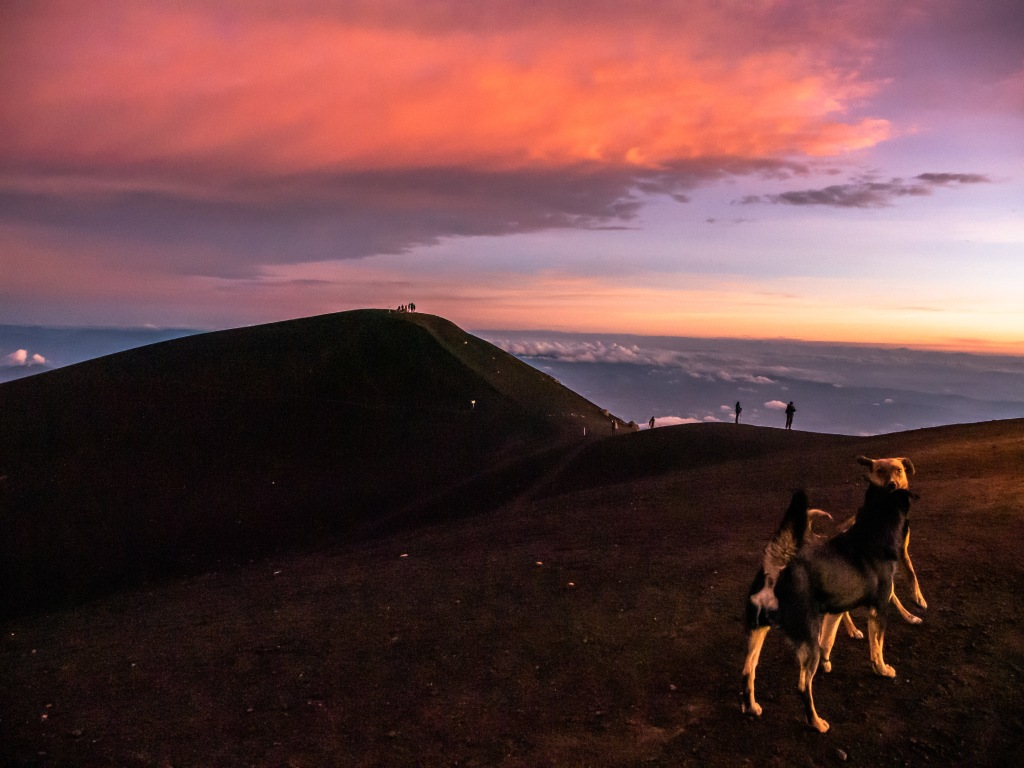 Crater of Acatenango at sunrise with dogs